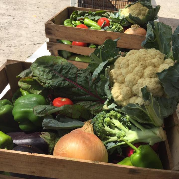 Crop box | Jerry Smith Farm