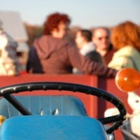 Hayride In The Country